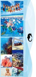 石垣島の楽園をのぞいてみよう
